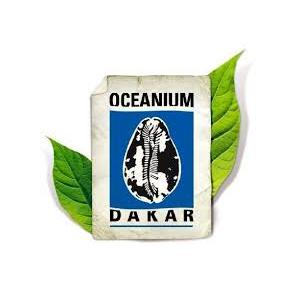 DEF_Partners_Logo_300px_oceanumdakar